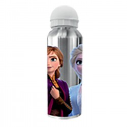 ΠΑΓΟΥΡΙ ΜΕΤΑΛΛΙΚΟ FROZEN 2 21x6,5cm   500ml CREATIVE CONCEPTS 4016-8490M